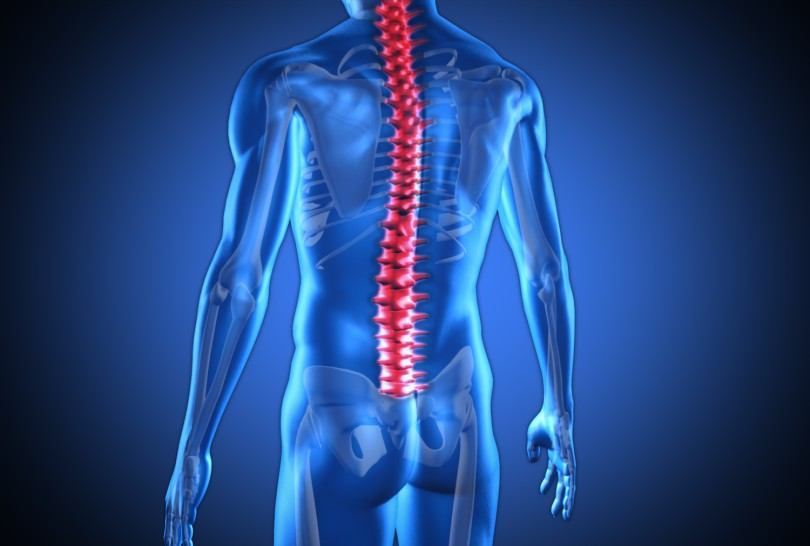 Digital blue human with highlighted red spine